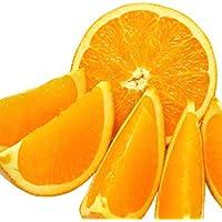 ネーブルオレンジ 訳あり 10kg 愛媛県産