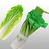 白菜柄 晴雨兼用 折り畳み傘 手動式 UVカット 8本骨3段折り 収納袋なし