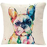 YGGQF Animal Throw Pillow Cover Head Frenchie French Bulldog Original Watercolor Dog Wildlife Rainbow Funny Happy Puppy Compa