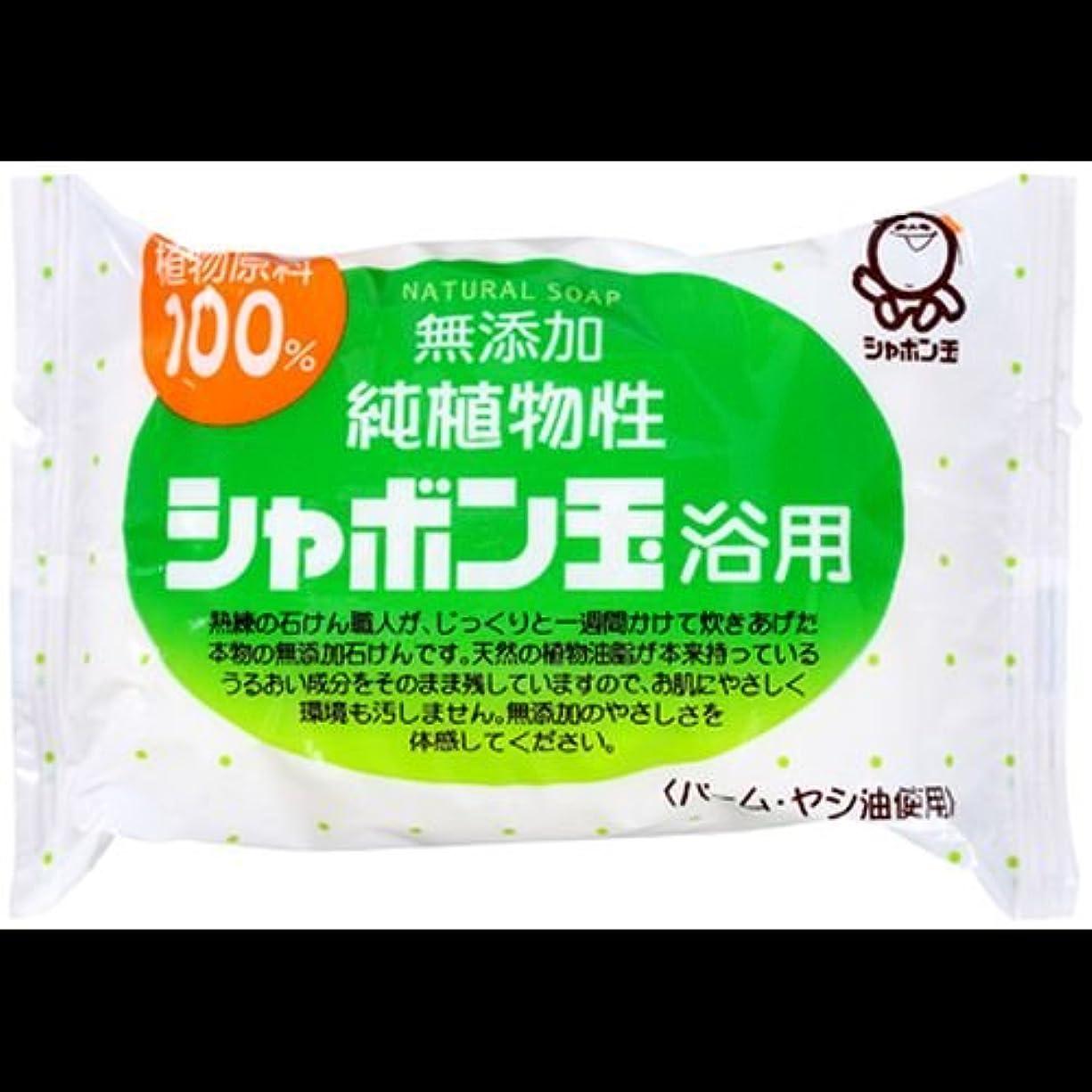 疲労独立食物【まとめ買い】シャボン玉 無添加 純植物性 シャボン玉浴用石けん 純植物性 100g ×2セット