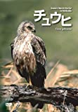 Raptor Profile vol.2 チュウヒ Eastern Marsh Harrier in Hokkaido [DVD]
