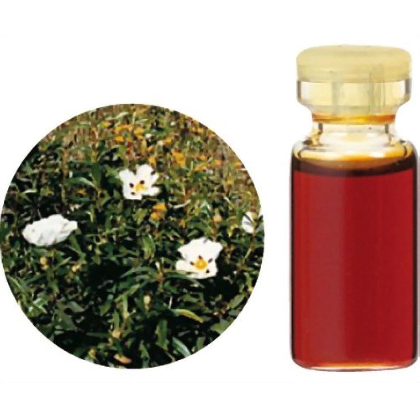 チャットインデックスコーヒー生活の木 Herbal Life レアバリューオイル シストローズ(ロックローズ) 3ml