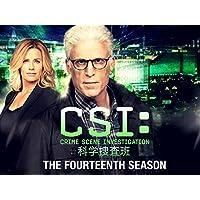 CSI:科学捜査班 シーズン 14 (吹替版)