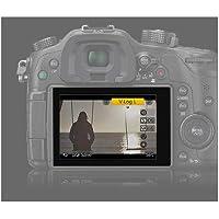 パナソニック デジタルカメラ LUMIX GH4 専用 V-Log L アップグレードソフトウェア DMW-SFU1