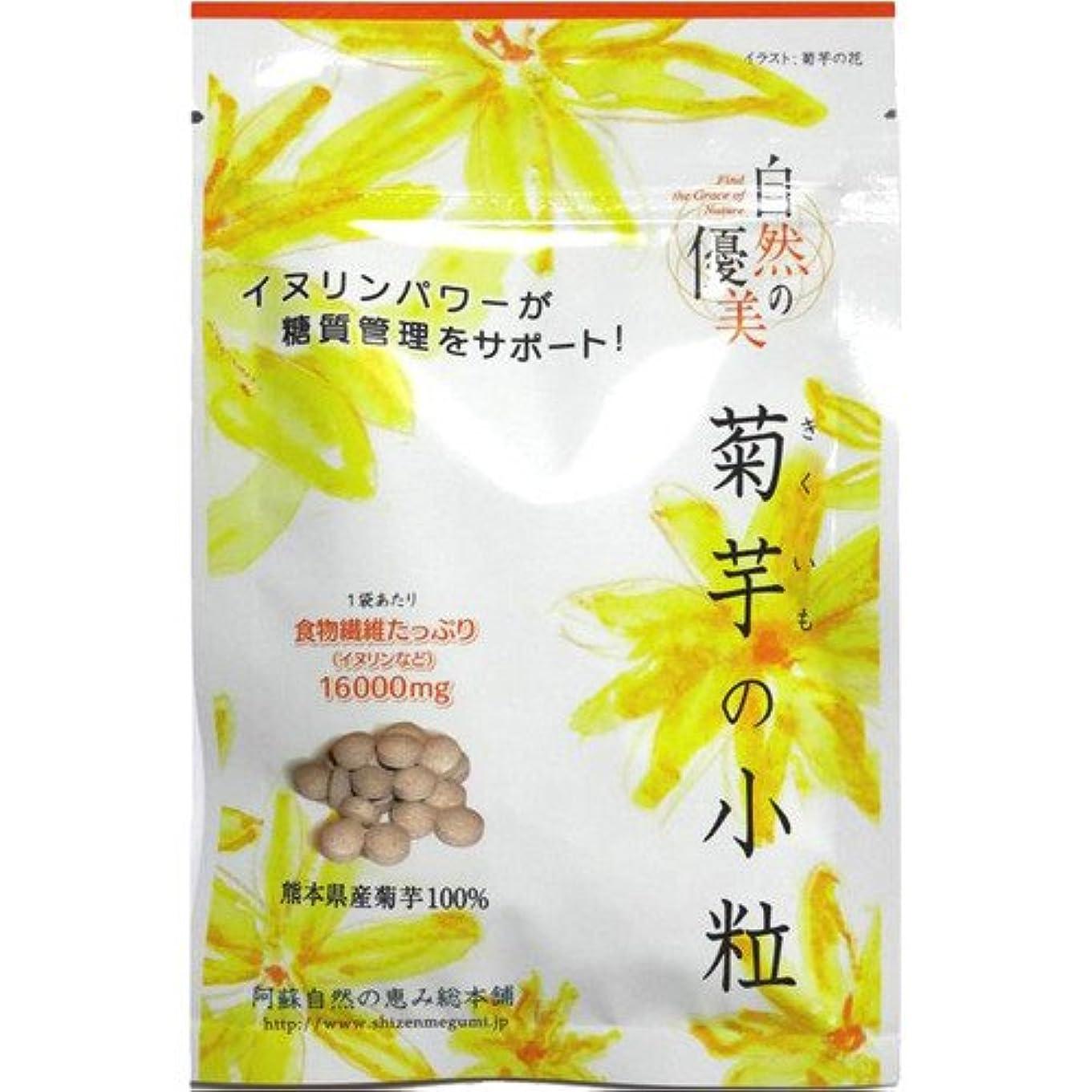 教育学銛突き刺す阿蘇自然の恵み総本舗 菊芋の小粒 100錠