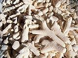 天然素材 白サンゴの400gパック ハワイインテリア ディスプレイ 手作り材料 ブライダル小物
