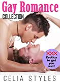 6 GAY EROTICA ROMANCE STORIES - NOT FOR THE WEAK!: Gay Romance (MM, Gay Erotica, First Time Gay, Bisexual Romance, Short Story Book 1) (English Edition)