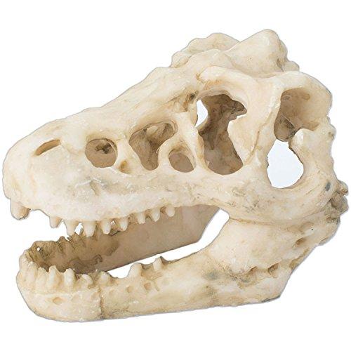 【F-grip】 アクアリウム 恐竜 骨 水槽 水槽オブジェ インテリア 鑑賞 金魚 熱帯魚 装飾 飾