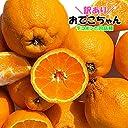 【 熊本県産 】不知火柑 デコポンと同品種 訳あり ご家庭用 (箱込 約10kg前後)