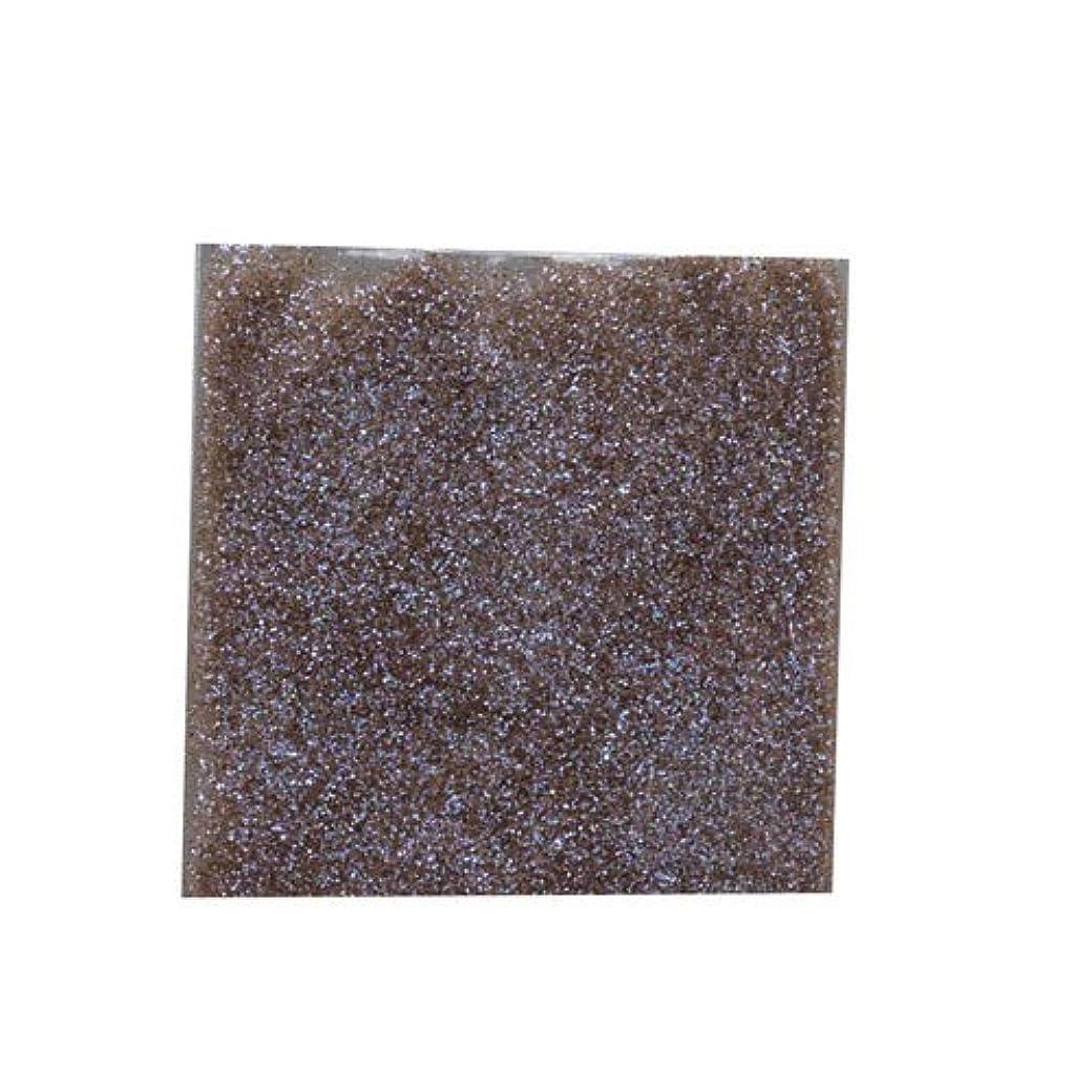 サミュエル運命ガードピカエース ネイル用パウダー ラメカラーオーロラB 耐溶剤 S #539 ブラウン 0.7g