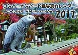 コンパニオンバード インコ 鳥A4写真カレンダー2017 (うつくしい鳥 可愛いインコ・オウム)