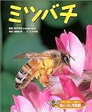 ドキドキいっぱい!虫のくらし写真館〈11〉ミツバチ