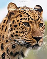2020 Weekly and Monthly Planner: Cheetah - Monthly Calendar with U.S./UK/ Canadian/Christian/Jewish/Muslim Holidays– Calendar in Review/Notes 8 x 10 in.- Big Cats Animals Nature