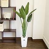 ストレリチア プラ鉢 フェイクグリーン 人工観葉植物 高さ120cm