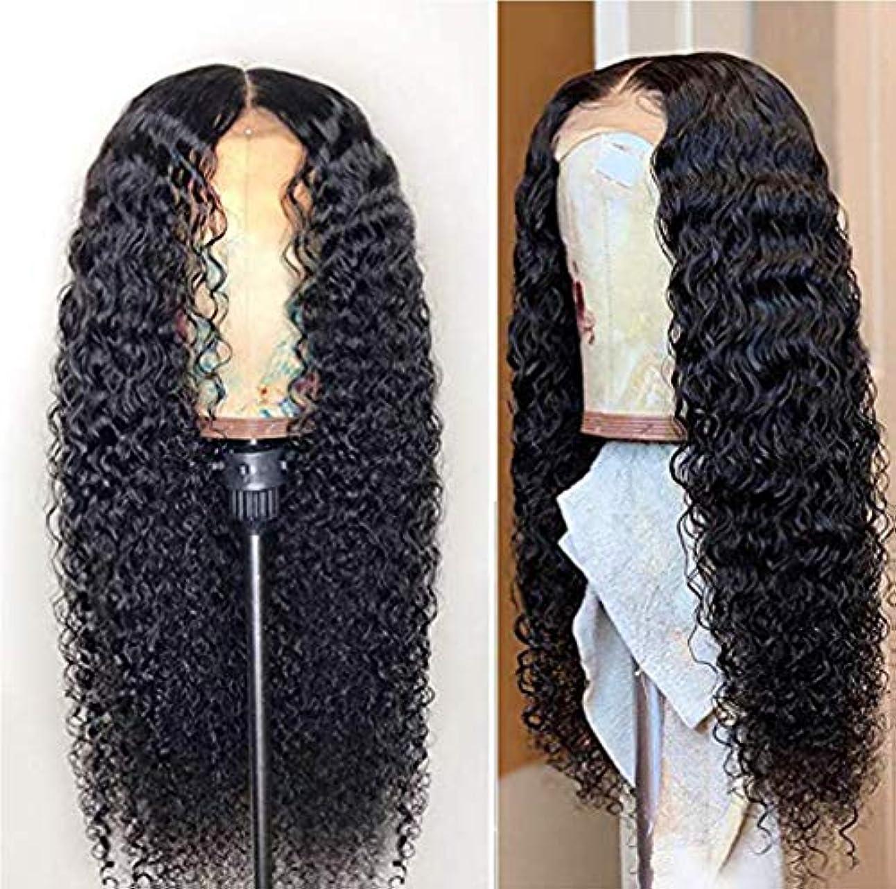 豚肉枝広告主女性150%密度フロントレースかつら耐熱合成長い髪の合成かつら側部かつら