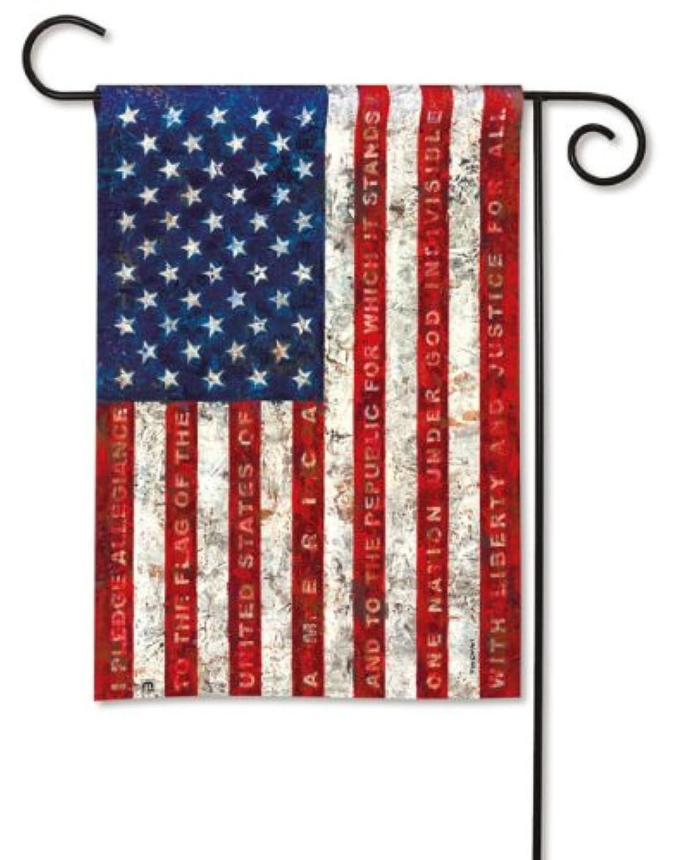 Magnet Works MAIL36448 Pledge of Allegiance Garden Flag