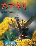 ドキドキいっぱい!虫のくらし写真館〈8〉カマキリ