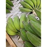 【期間限定】 沖縄県産 島バナナ(小笠原種) 約1000g相当分 数少ない国産バナナ 甘みと酸味のバランスが絶妙で濃厚な風味