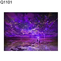 ruixuered-可愛い人気上品夢のような5d星空夜空Diamong絵画ホームカフェ屋内壁の芸術の装飾 - Q1101