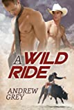 A Wild Ride (The Bullriders Book 1) (English Edition)