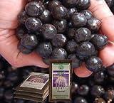 FRUTAFRUTA(フルッタフルッタ)・アサイー(アサイ)100%・パルプ100g×12(注目のブラジルフルーツのジュース)