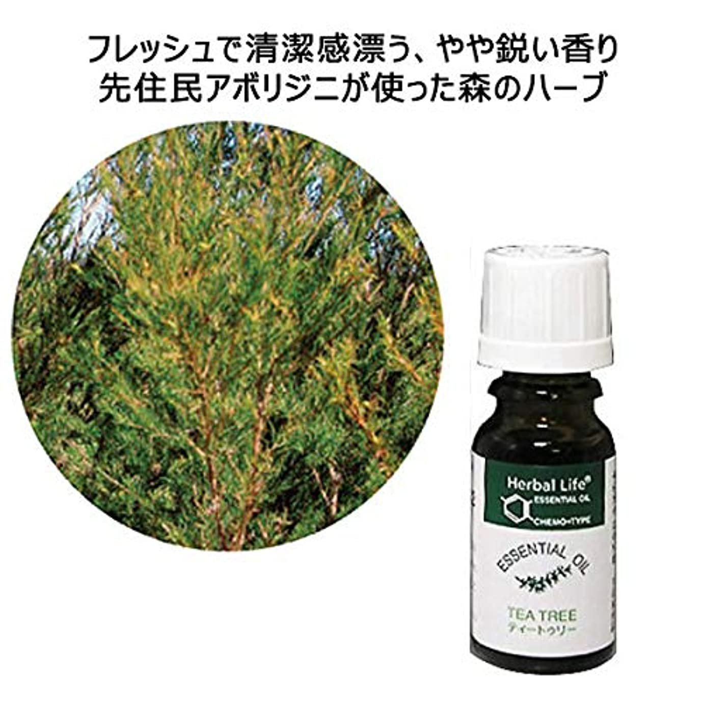 マイコンフラフープ一回【生活の木】ティートゥリー 10mL