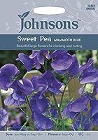 【輸入種子】 Johnsons Seeds Sweet Pea MAMMOTH BLUE スイート・ピー マンモス・ブルー ジョンソンズシード