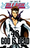 BLEACH—ブリーチ— 48 (ジャンプコミックス)