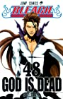 BLEACH -ブリーチ- 第48巻