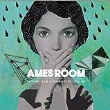 Supreme Team & ヨンジュン (Brown Eyed Soul) Mini Album - Ames Room