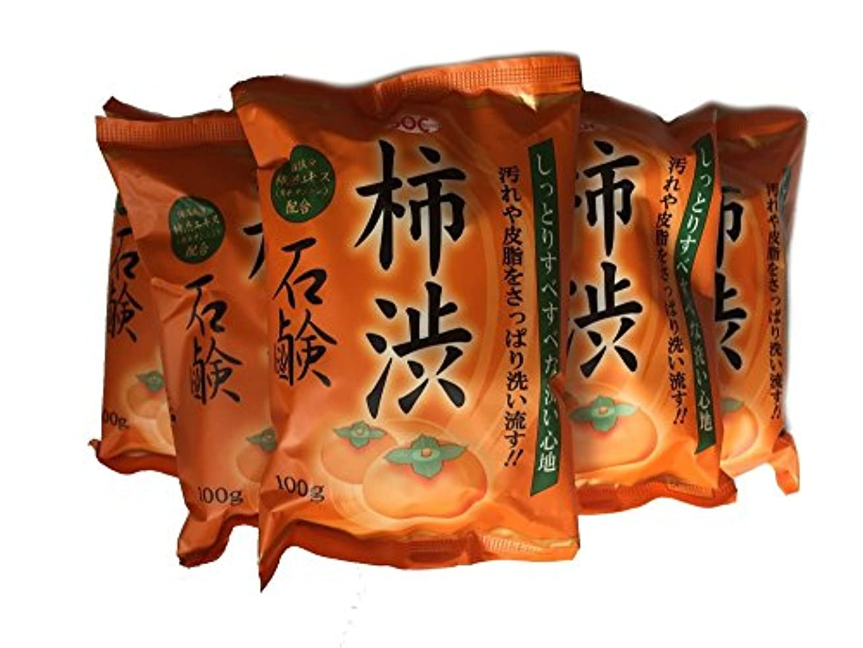 エレクトロニック魔女軽蔑柿渋石鹸 100g ×6個
