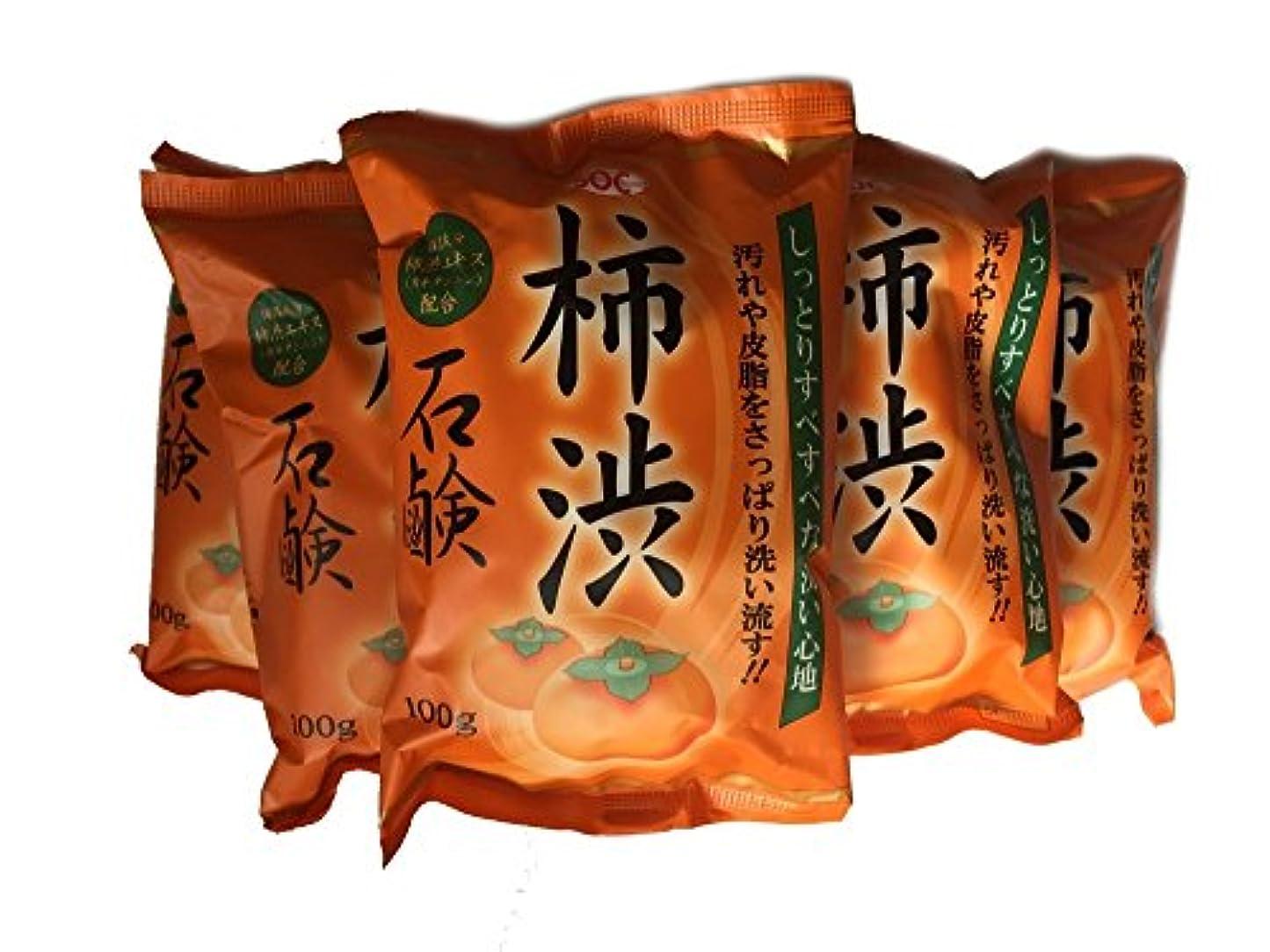リットル締める露出度の高い柿渋石鹸 100g ×6個