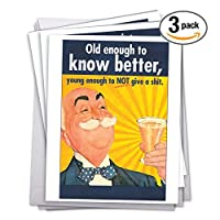 J5411BDG3 3 Pack of Jumbo Birthday Greeting Cards: Old Enough Birthday; with Envelopes (Extra Large Size: 8.5 x 11) [並行輸入品]