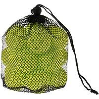 (ビジョンクエスト) visionquest 野球 ソフトボール トレーニング用品 ミニバッティング 練習ボール (20コ入) VQ550411D11