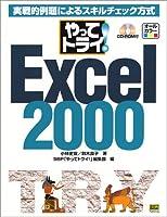 やってトライ!Excel2000―実戦的例題によるスキルチェック方式