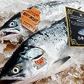 【鮭児 最高級】北海道産 道東 鮭児 2.5kg前後【サケ さけ】