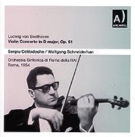 Violin Concerto in Dmajor/