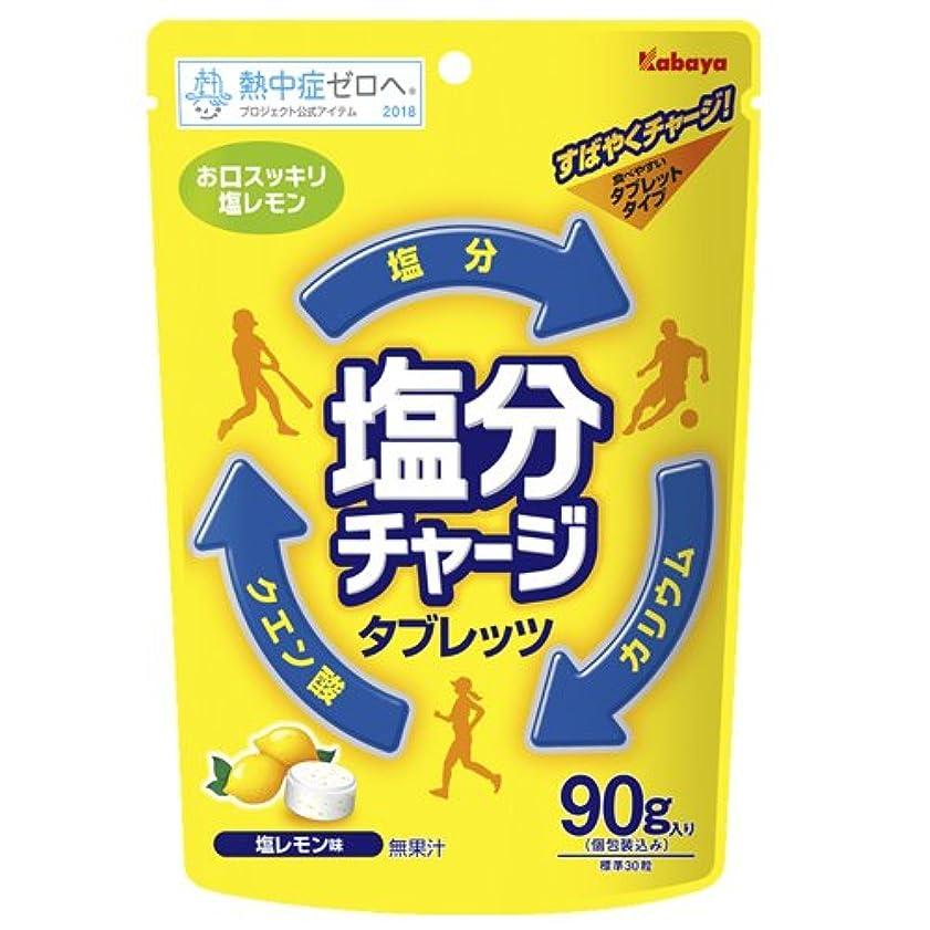 自動車銀行備品塩分チャージ タブレッツ 塩レモン 90g (塩レモン)