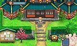 牧場物語 ふたごの村+ - 3DS 画像