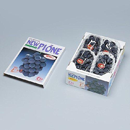 ニューピオーネ 岡山県産 JAおかやま  赤秀 3〜5房  約2kg  ピオーネ 葡萄 ぶどう ブドウ