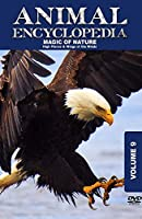 Animal Encyclopedia 9: High Places & Wings of [DVD] [Import]