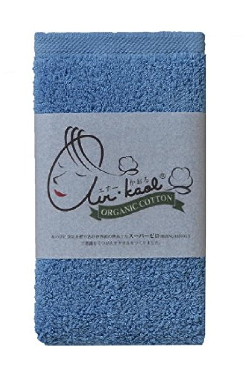 バウンドお風呂を持っている優れたエアーかおる タオル マルチ 32×40×1cm 2個セット