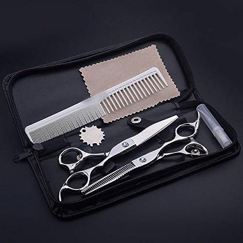 持続的生命体急性Goodsok-jp 6.0インチブルーダイヤモンドプロフェッショナル理髪はさみ (色 : Silver)