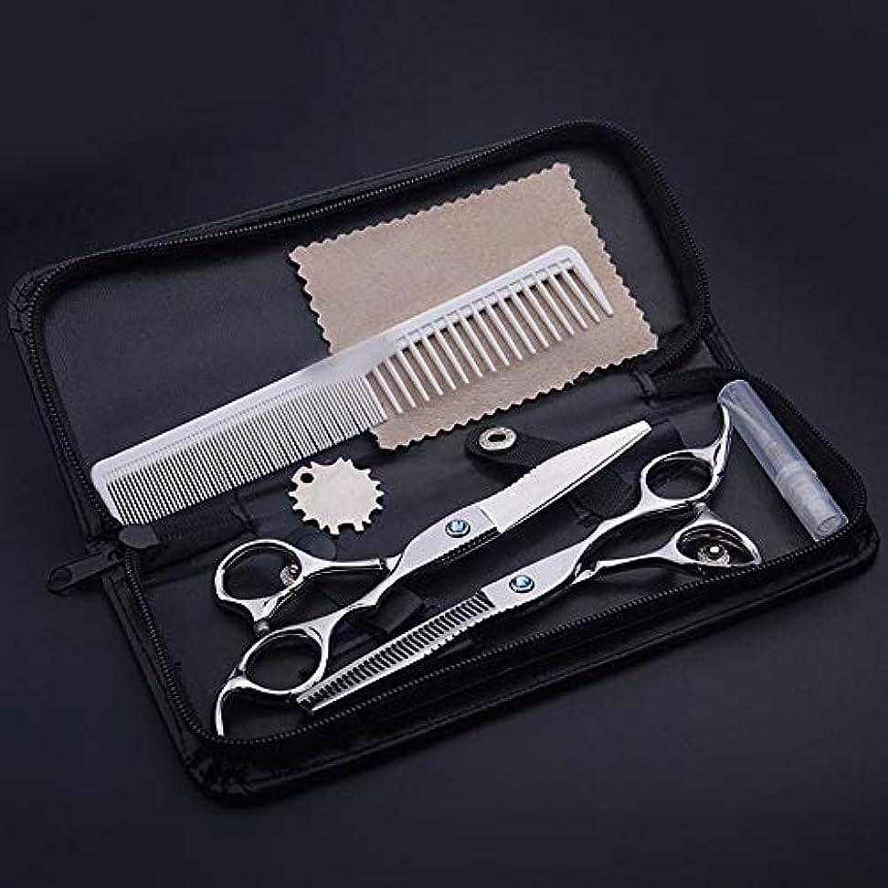 ダイエット生むフィヨルドGoodsok-jp 6.0インチブルーダイヤモンドプロフェッショナル理髪はさみ (色 : Silver)
