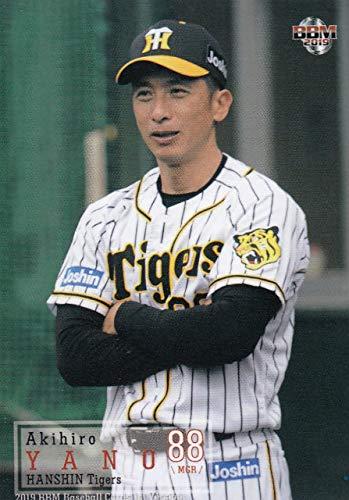 2019 BBMベースボールカード 298 矢野燿大 阪神タイガース (レギュラーカード) 1stバージョン