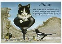 ねこの引出し フランス製猫のポストカード  ★Matoupie