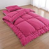 [防ダニ 抗菌 防臭] ウォッシャブル 布団 ベッド用 ダブル 4点 セット カラー ピンク