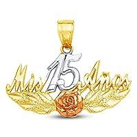 ジュエルタイ ソリッド 14K 3色 ゴールド装飾 スイート 15 クィンキー時代 ペンダントチャーム ローズアクセント 16x28 mm