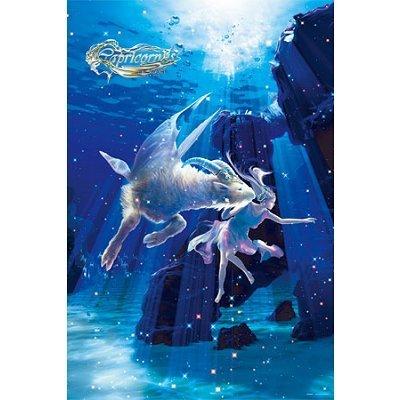 スターリーテイルズ the Zodiac by KAGAYA 1000ピース カプリコーナス -山羊座-【光るパズル】 (50cm×75cm、対応パネルNo.10)