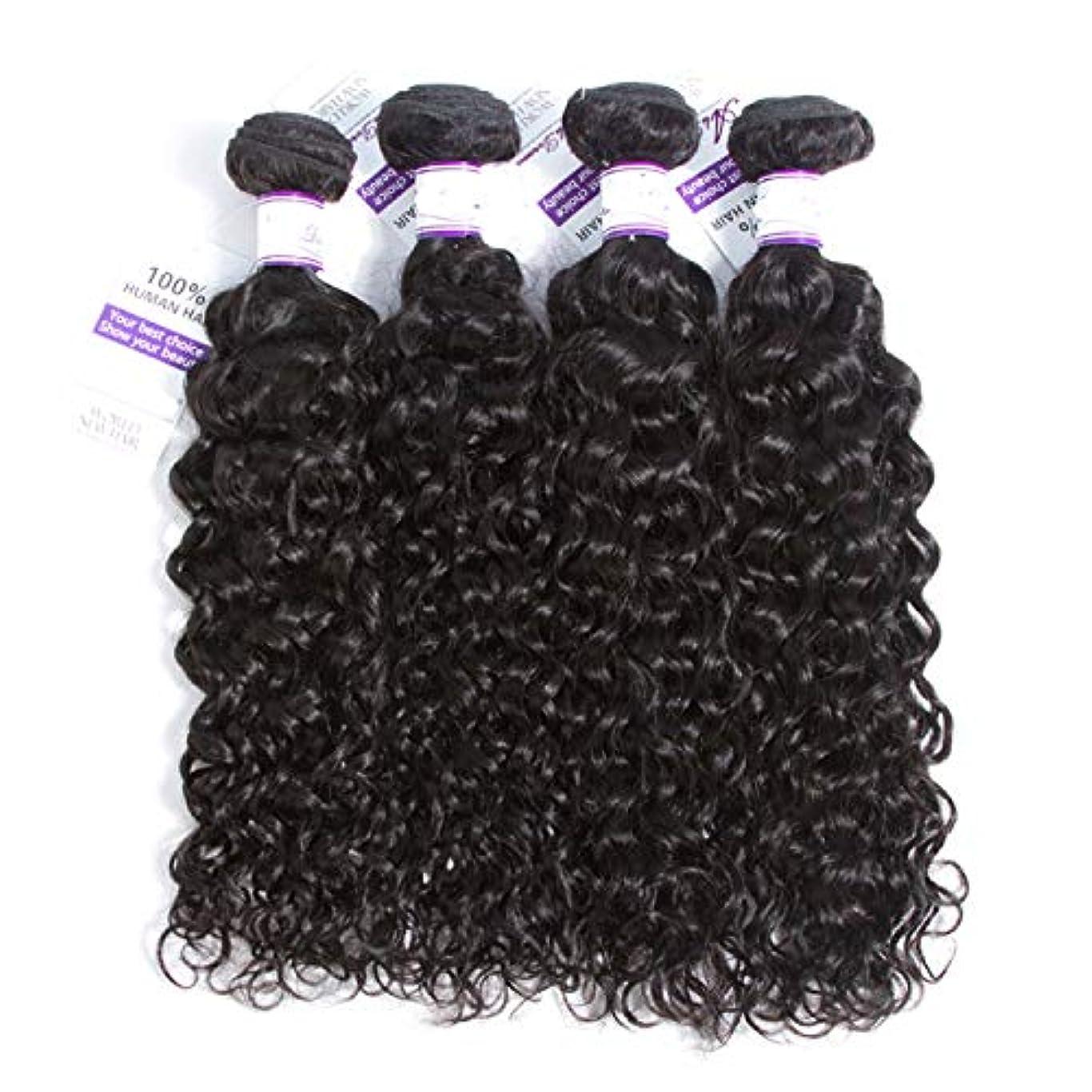 プラス胃資産かつら マレーシアの水の波髪4個人間の髪の毛の束非レミーの毛延長ナチュラルブラック (Length : 10 10 10 10)